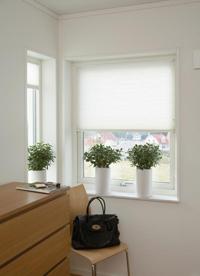 plissee online und g nstig aus dem fachhandel. Black Bedroom Furniture Sets. Home Design Ideas